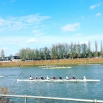 #thames #rowing #london #chiswickbridge