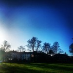 #buongiorno dalla nuova #location #newhome #casa #sky #park #londonlife #london #londra #chiswick #sun #blue #trees #picoftheday
