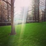 Stunning #view at #canarywharf #green #park #sun #sunnyday #sunshine #london #londra #photosofengland #picoftheday