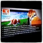 Vita da cani #televisionfordogs #onlyfordogs #dogtv #londra #london #londonlife #cimancailcane #evolution