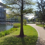 #great #shiny #sunny #day #chiswick #chiswickbusinesspark #chiswickpark  #nofilter