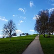#primerosehill #london #sunshine